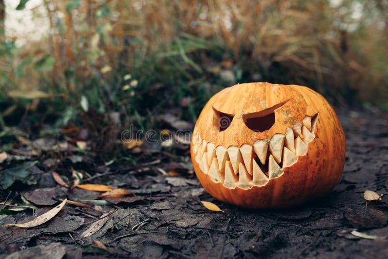 Cric-o-lanterne de Halloween avec le visage de sourire antropomorfic sur des feuilles d'automne extérieures image libre de droits