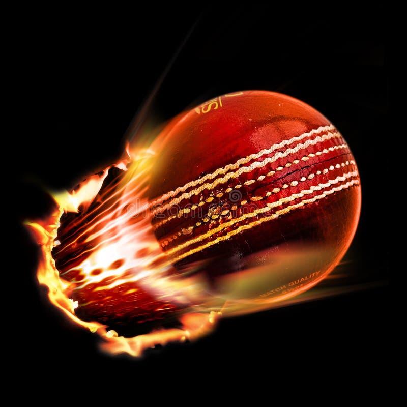 cricket illustration de vecteur
