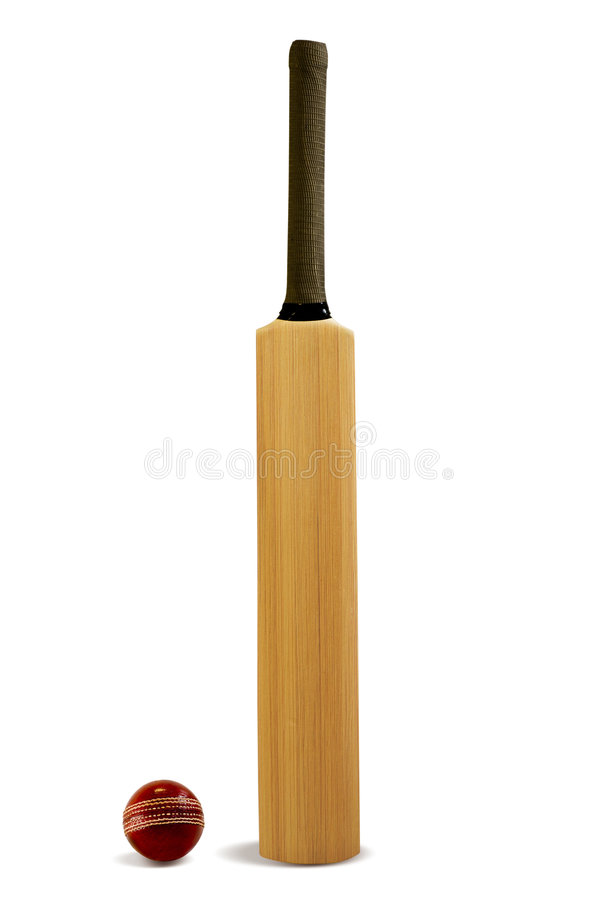 cricket photo libre de droits