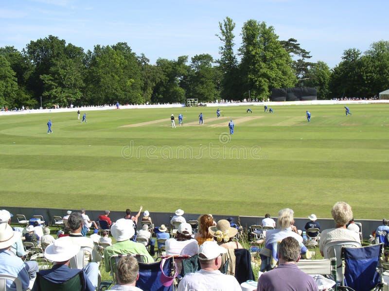 cricket arundel obrazy stock