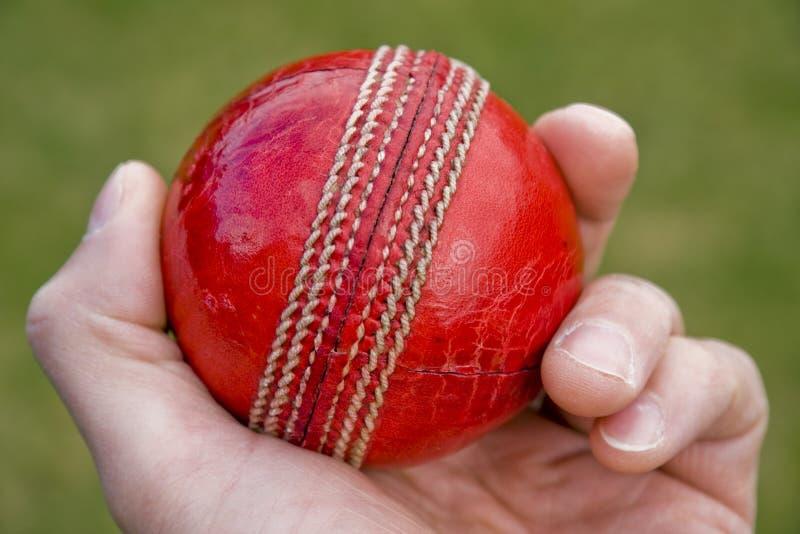 Cricket ball royalty free stock photos