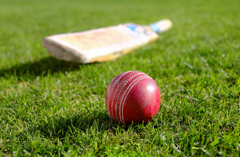 Sports Cricket Ball Grass Background Stock Photo - Image ...