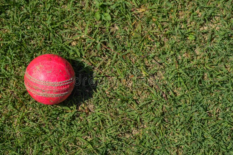 Cricket  ball on a green grass. Cricket equipment isolated on a green background. royalty free stock photos