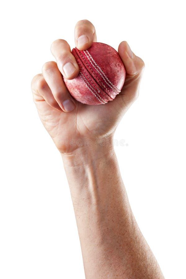 Cricket Ball Sports Hand royalty free stock photos