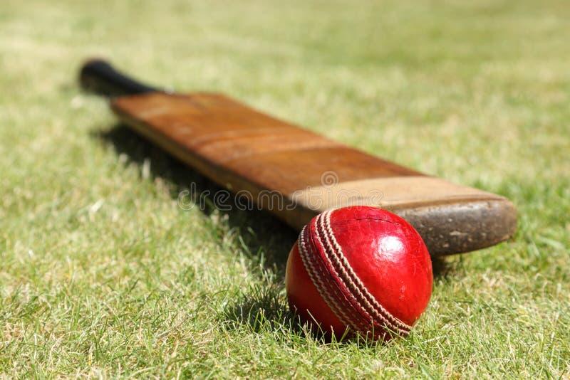 Cricket bat and ball. Cricket ball and bat on green grass of cricket pitch stock photos