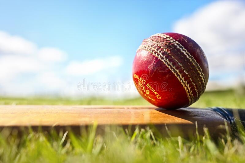 Cricket bat and red leather ball background royalty free stock photo