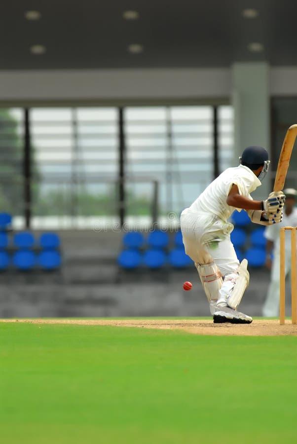 A cricket batsman royalty free stock photos