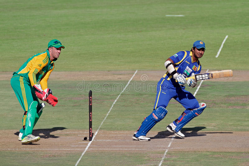 Cricket d'une journée international photographie stock libre de droits