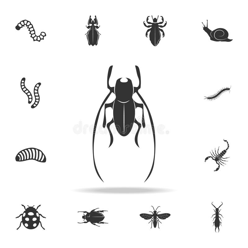 Cricket. Detailed set of insects items icons. Premium quality graphic design. One of the collection icons for websites, web design. Mobile app on white vector illustration