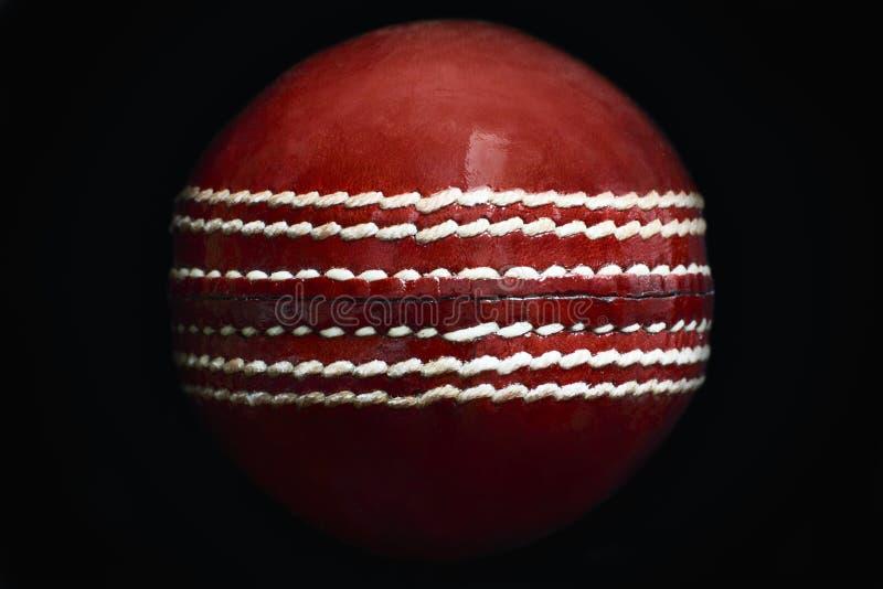 cricket floodlit royaltyfria bilder
