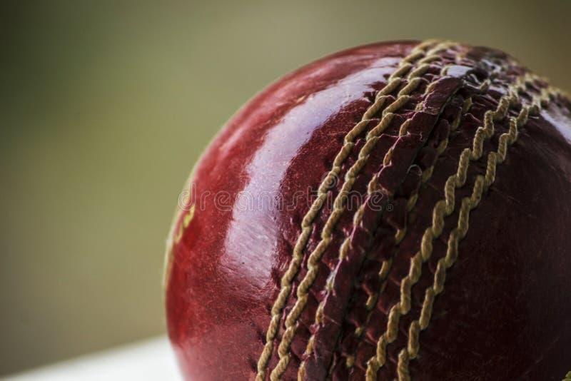 cricket floodlit 图库摄影