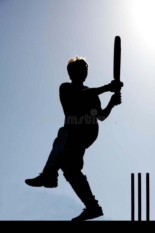 Download Cricket game Silhouette stock photo. Image of game, gloves - 6831164