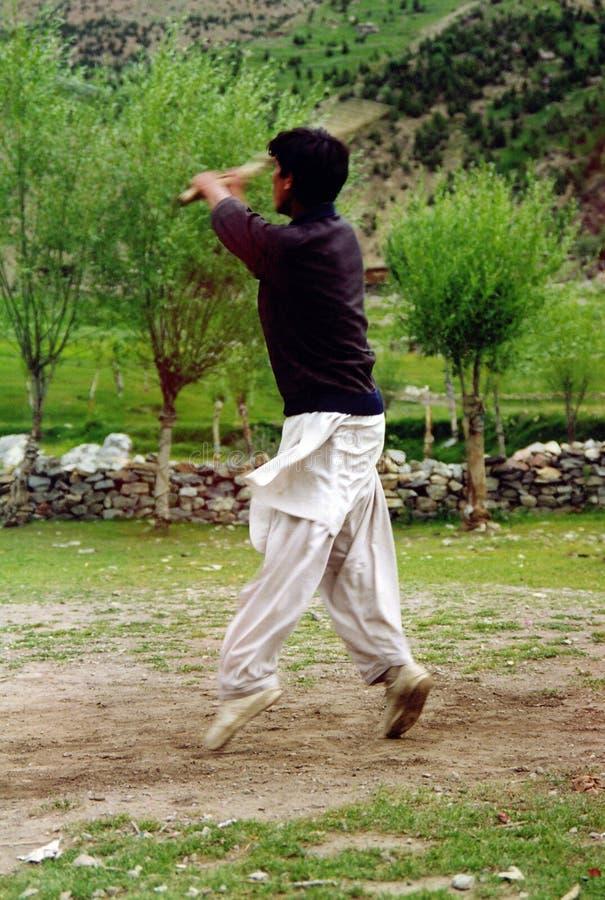 Download Cricket gra zdjęcie stock. Obraz złożonej z wieś, relaks - 39368
