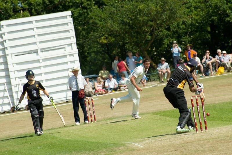 Cricket match royalty free stock photo