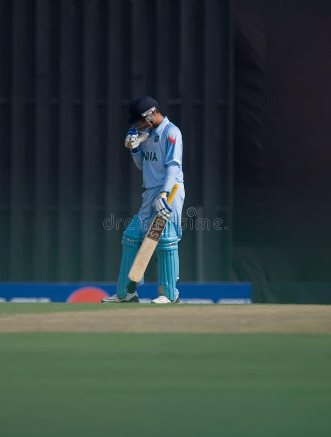 cricket pałkarza obrazy stock