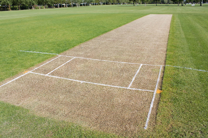 Download Cricket pitch empty stock image. Image of field, photography - 13893959