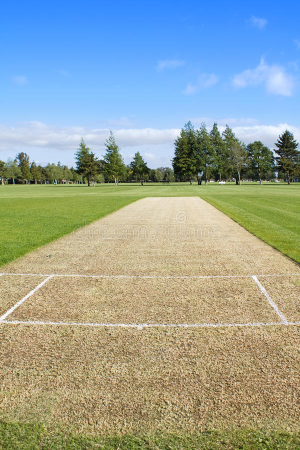 Cricket pitch empty stock photos