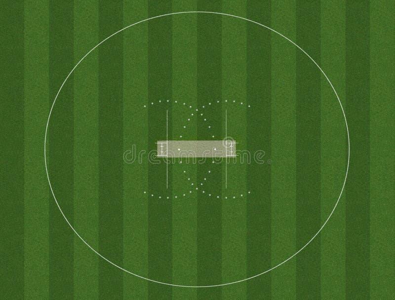 Cricket field grass
