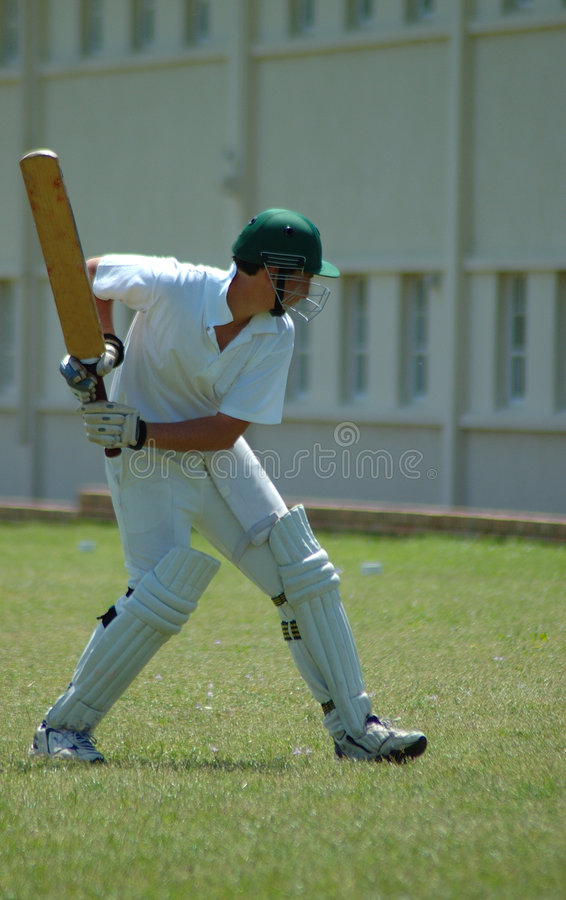 Free Cricket Player Stock Photography - 1401142