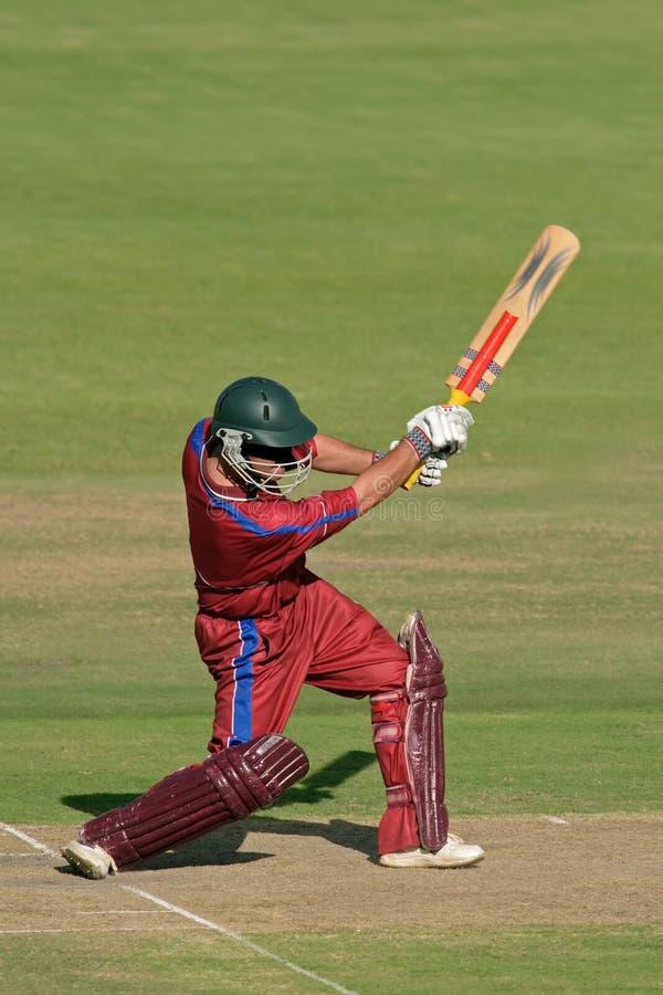 Cricket player (batsman) royalty free stock images