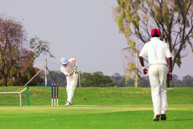 Cricket player hitting ball stock photo