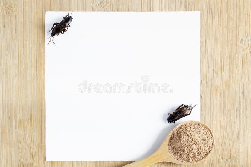 Cricket polvering insect for food in cucchiaino di legno con carta bianca su fondo di legno è una buona fonte di proteine immagini stock