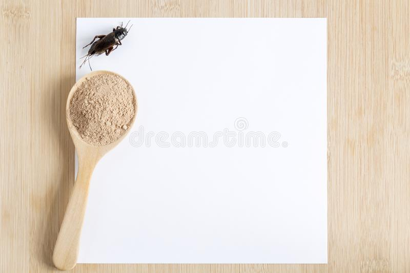 Cricket powder insect for eating as food in wooden spoon with mockup white paper on wood background it is good source of protein stock photography