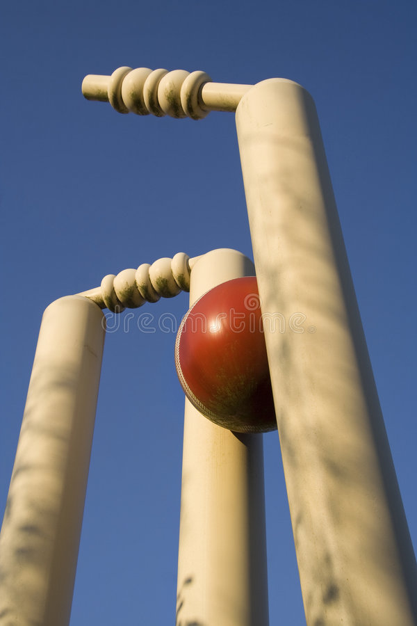 Cricket stumps royalty free stock photo