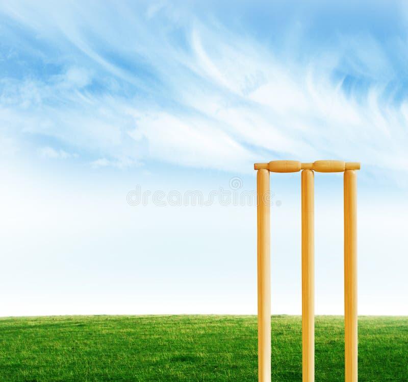 Cricket stumps royalty free stock photography