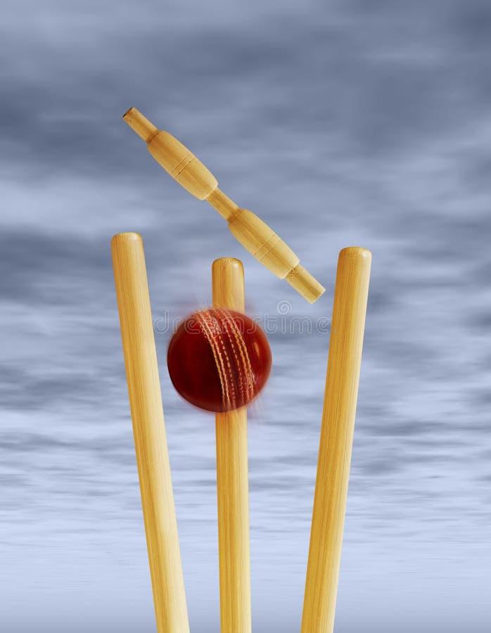 Cricket stumps stock photography