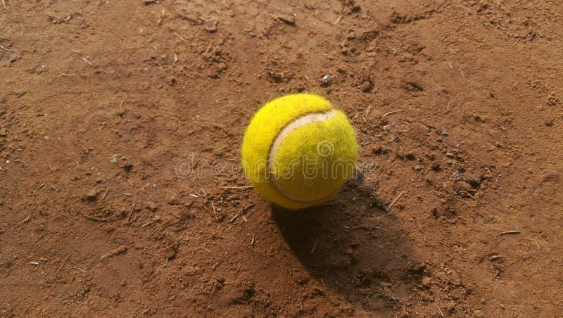Ball. Cricket and tennis ball stock photo