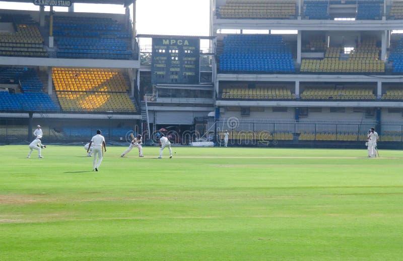 Cricket Test Match, Field Positions, Batsman Hitting Ball stock photo