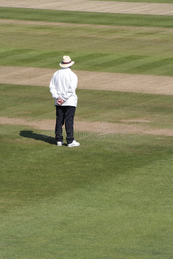 Cricket umpire royalty free stock images