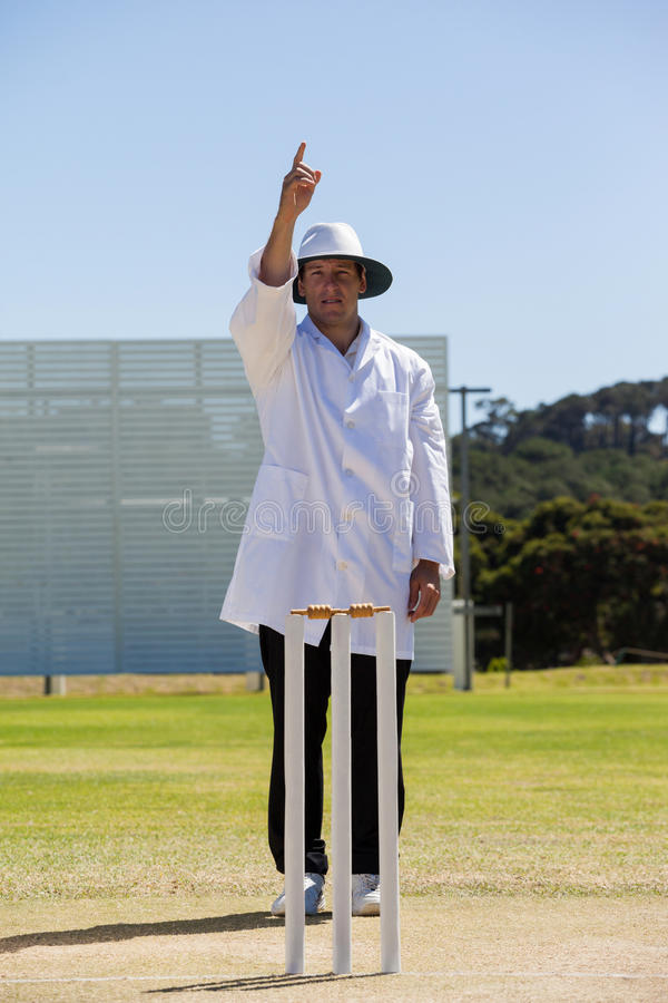 Cricket umpire signalling out during match stock photography
