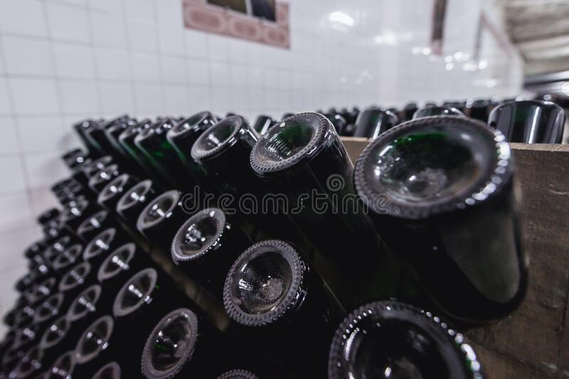 Cricova winery in Moldova. Bottles of sparkling wine during stage of production method called riddling in famous winery in Cricova town, Moldowa, cellar, moldova royalty free stock photos