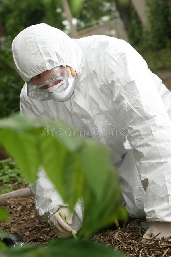 Download Crime scene investigation stock image. Image of danger - 9679123
