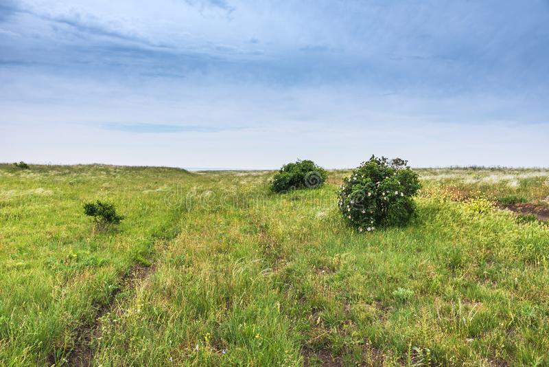 Crimea nature reserve - the road to travel. Landscape park- Kerch peninsula. Nature reserve - the road to travel. Hiking historical places Crimea. Landscape park stock photos