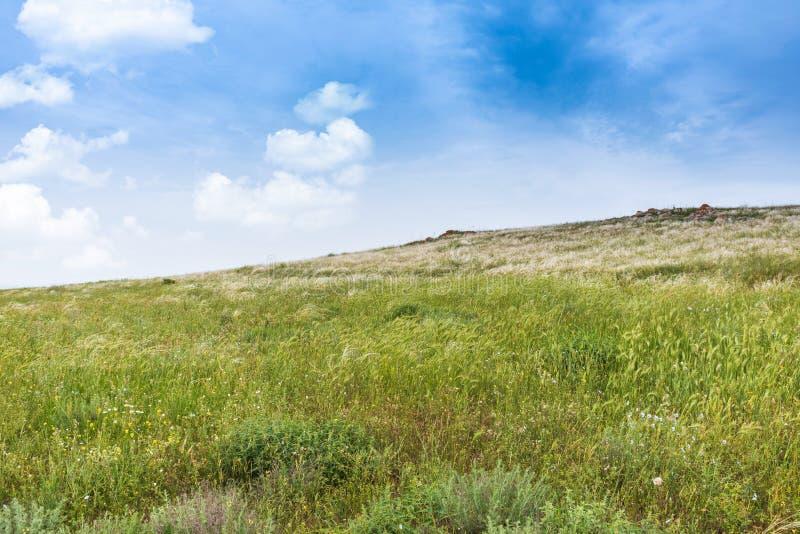 Crimea steppe- landscape park. Kerch peninsula. Sights of Crimea - lush vegetation, steppe zone in the spring. Landscape park- Kerch peninsula stock photography