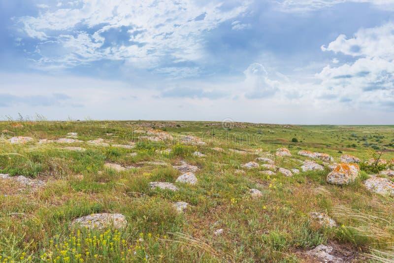 Crimea steppe- landscape park. Kerch peninsula. Sights of Crimea - lush vegetation, steppe zone in the spring. Landscape park- Kerch peninsula royalty free stock photography