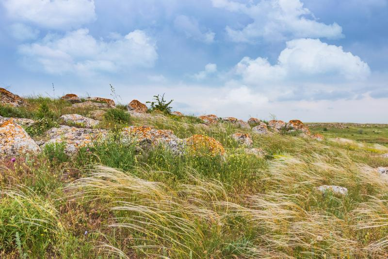 Crimea steppe- landscape park. Kerch peninsula. Sights of Crimea - lush vegetation, steppe zone in the spring. Landscape park- Kerch peninsula royalty free stock photo