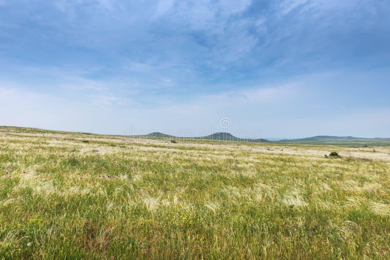 Crimea steppe- landscape park. Kerch peninsula. Sights of Crimea - lush vegetation, steppe zone in the spring. Landscape park- Kerch peninsula stock photos