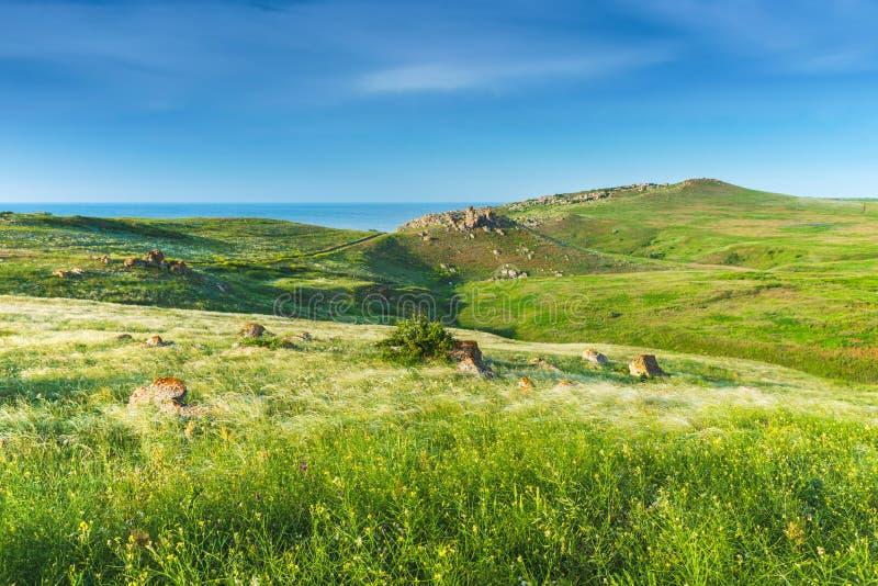Crimea steppe- landscape park. Kerch peninsula. Sights of Crimea - lush vegetation, steppe zone in the spring. Landscape park- Kerch peninsula royalty free stock image