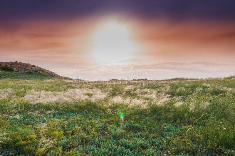 Crimea steppe- landscape park. Kerch peninsula. Sights of Crimea - lush vegetation, steppe zone in the spring. Landscape park- Kerch peninsula stock images