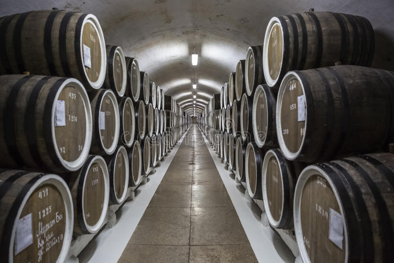 crimea Symmetri i vinkällaren royaltyfria bilder
