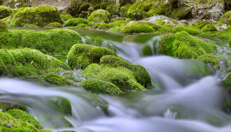 Crimean streams stock photography