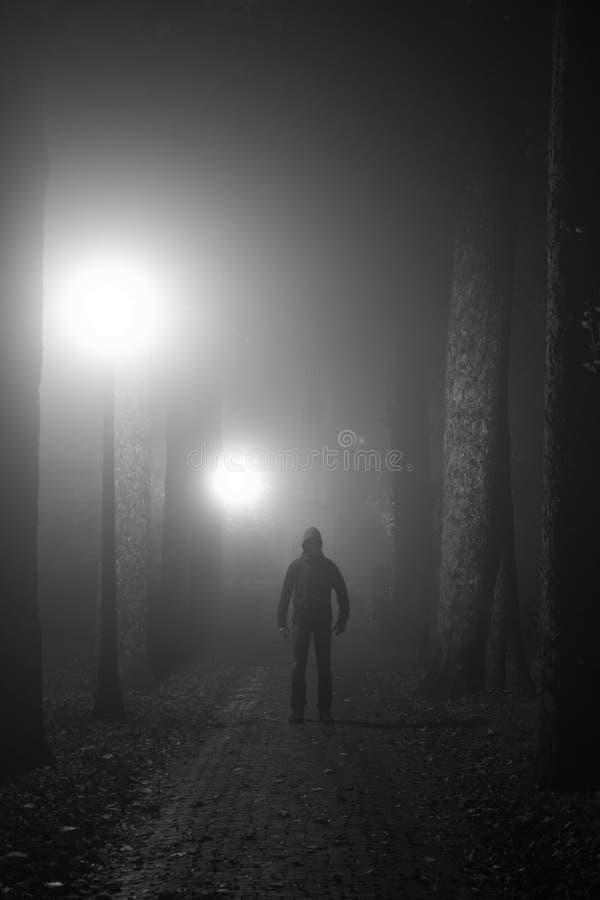 Criminal en la niebla fotos de archivo