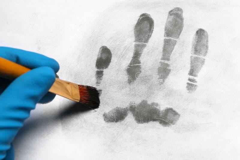 Criminalista que toma huellas dactilares con el cepillo de la superficie ligera, primer imagen de archivo libre de regalías