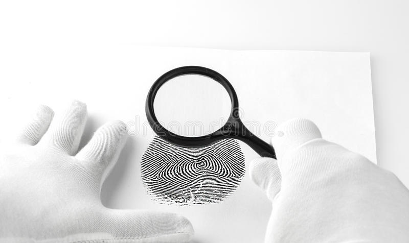 Criminology expert through a magnifying glass looking at a fingerprint. stock images