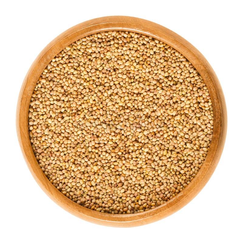 Crimson clover seeds in wooden bowl over white stock photo