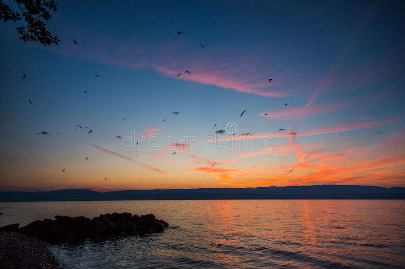 Crimson Sunset and Dramatic Sky over Lake Leman and Jura Mountains royalty free stock images